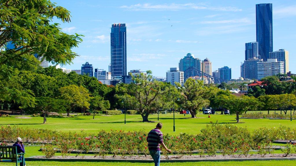 New Farm Park que incluye vistas de paisajes, un parque y un edificio de gran altura