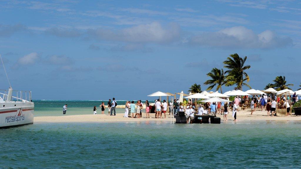 Islas Caimán mostrando escenas tropicales y una playa de arena y también un gran grupo de personas