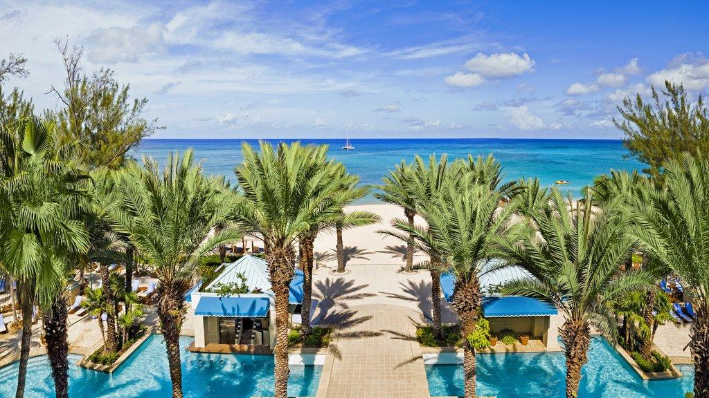 Islas Caimán que incluye escenas tropicales, un hotel o resort de lujo y una alberca