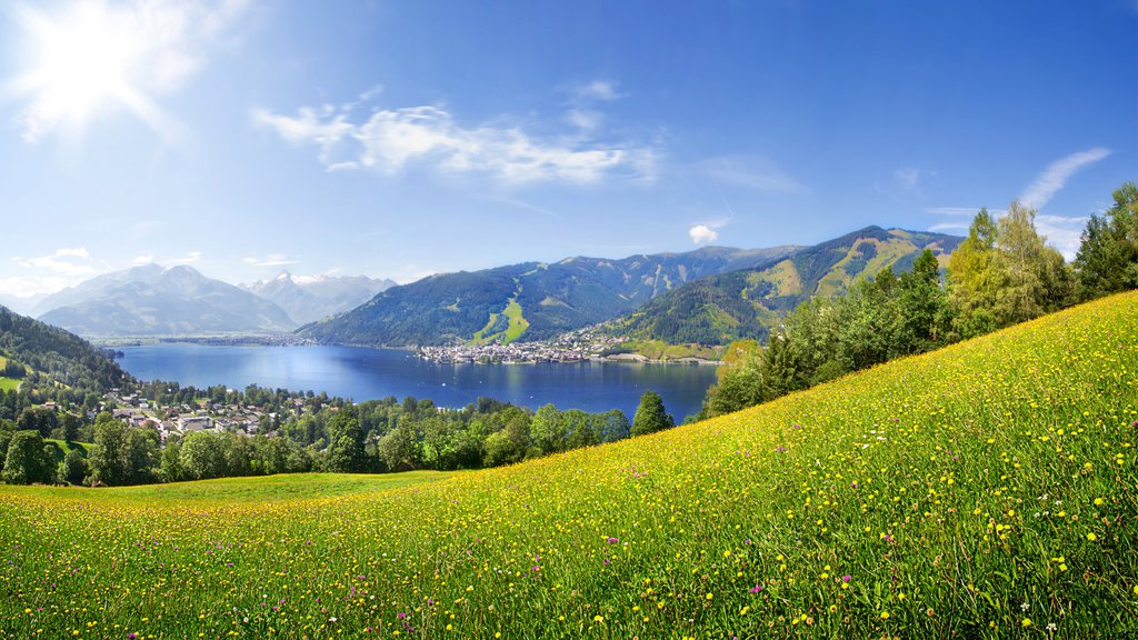 Zell am See showing tranquil scenes, a lake or waterhole and mountains