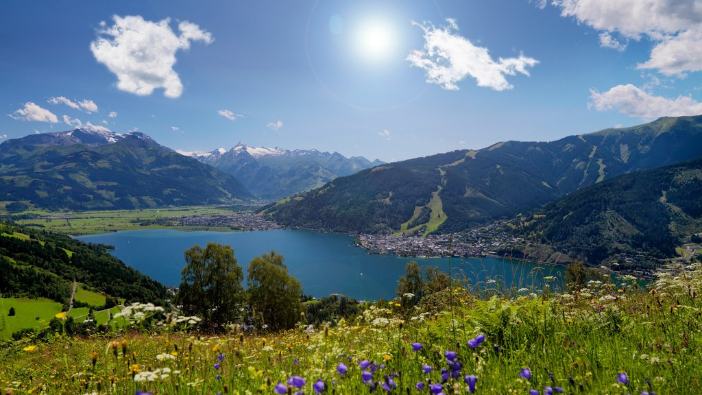 Zell am See which includes landscape views, flowers and mountains