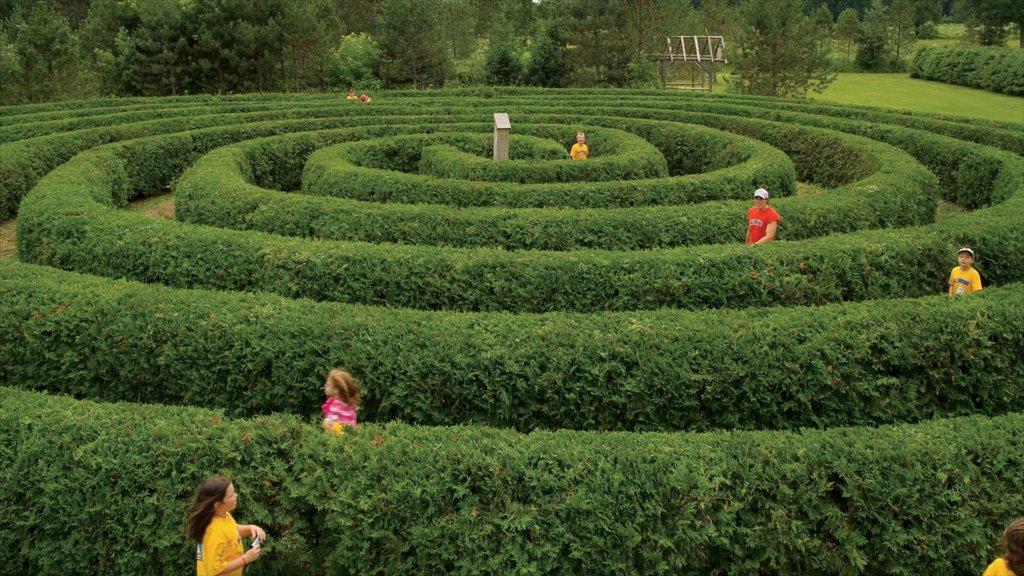 Ottawa showing outdoor art, rides and a garden