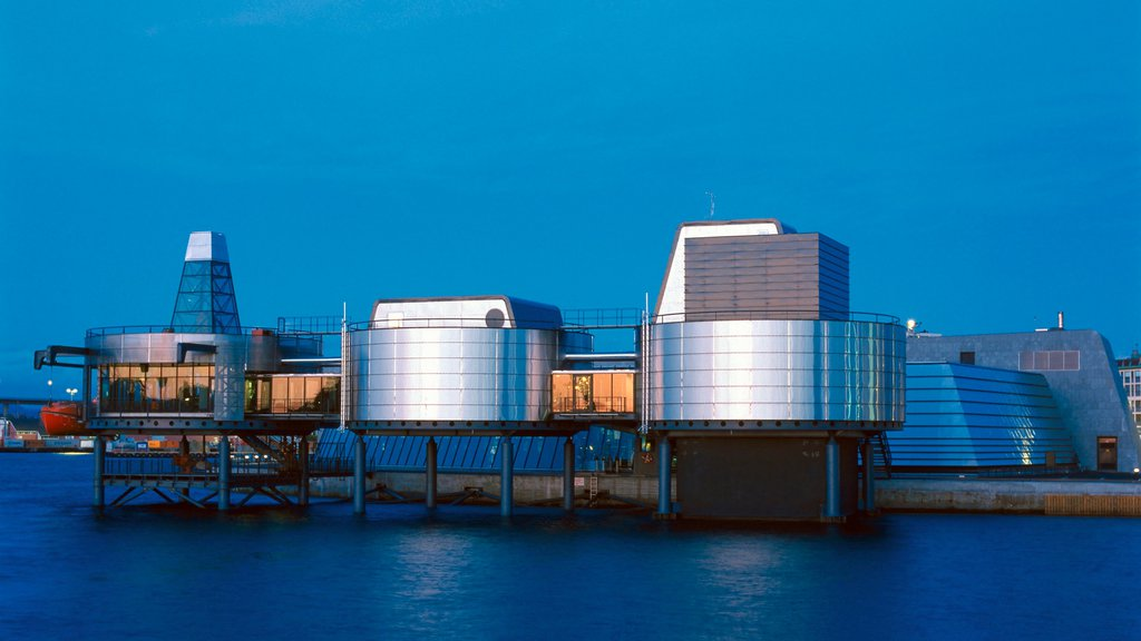 Norwegian Petroleum Museum showing modern architecture, a city and a coastal town