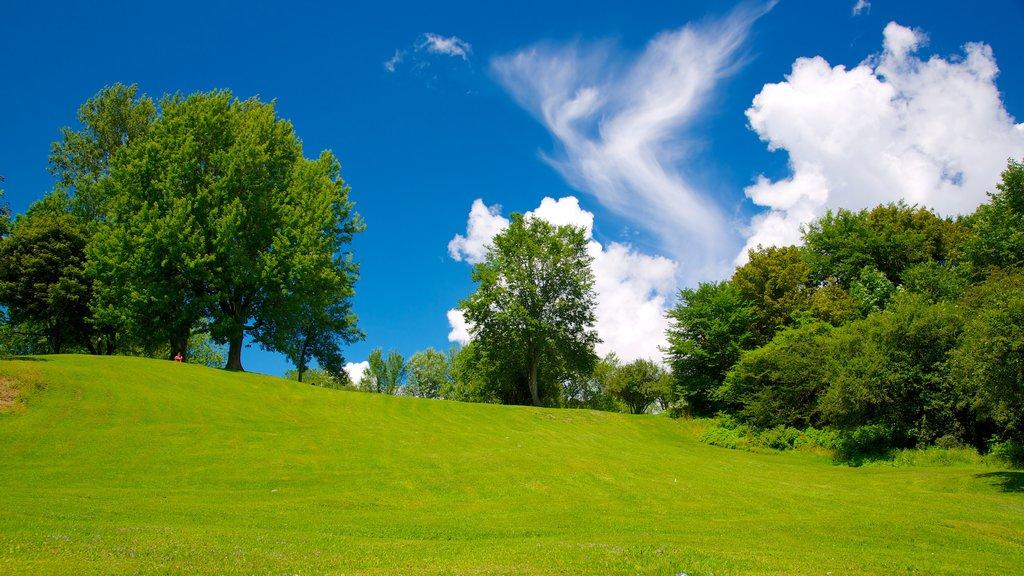 Battlefields Park featuring a garden