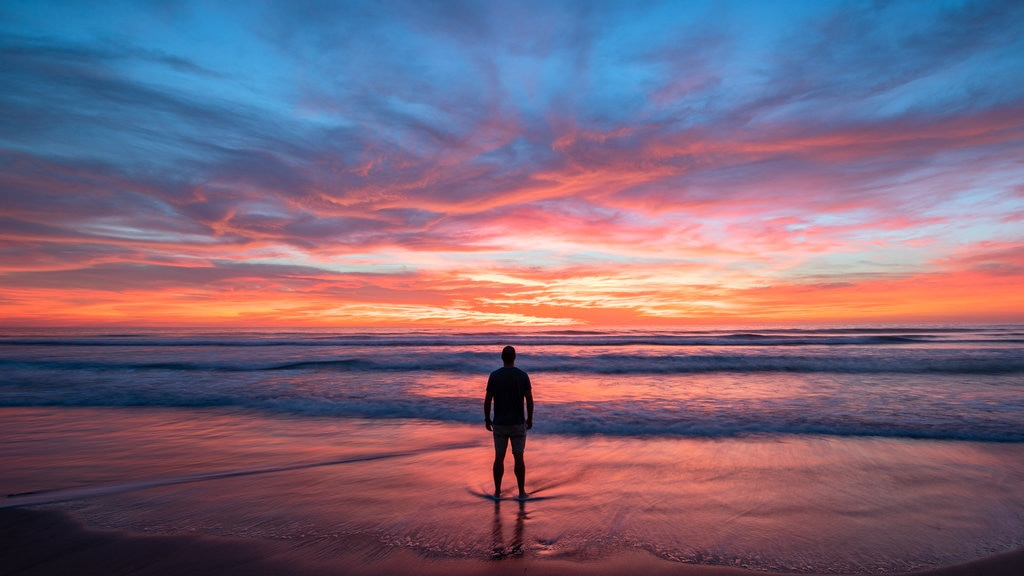 Sur de California ofreciendo vistas generales de la costa, una playa y una puesta de sol