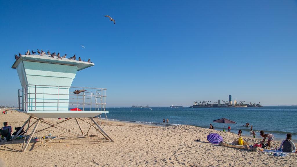 City Beach featuring general coastal views and a sandy beach