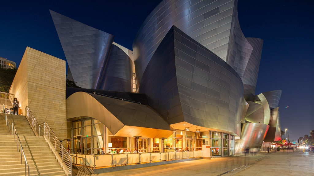 Walt Disney Concert Hall which includes modern architecture and night scenes