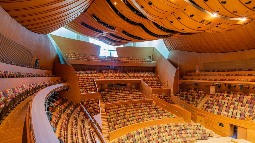 Walt Disney Concert Hall featuring interior views and theater scenes