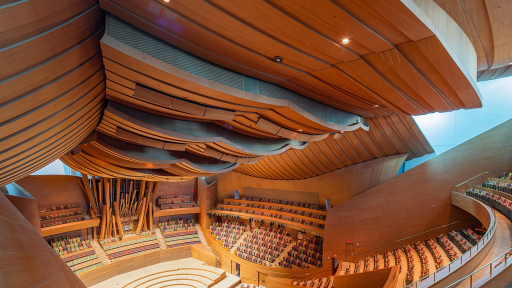 Walt Disney Concert Hall which includes interior views and theater scenes