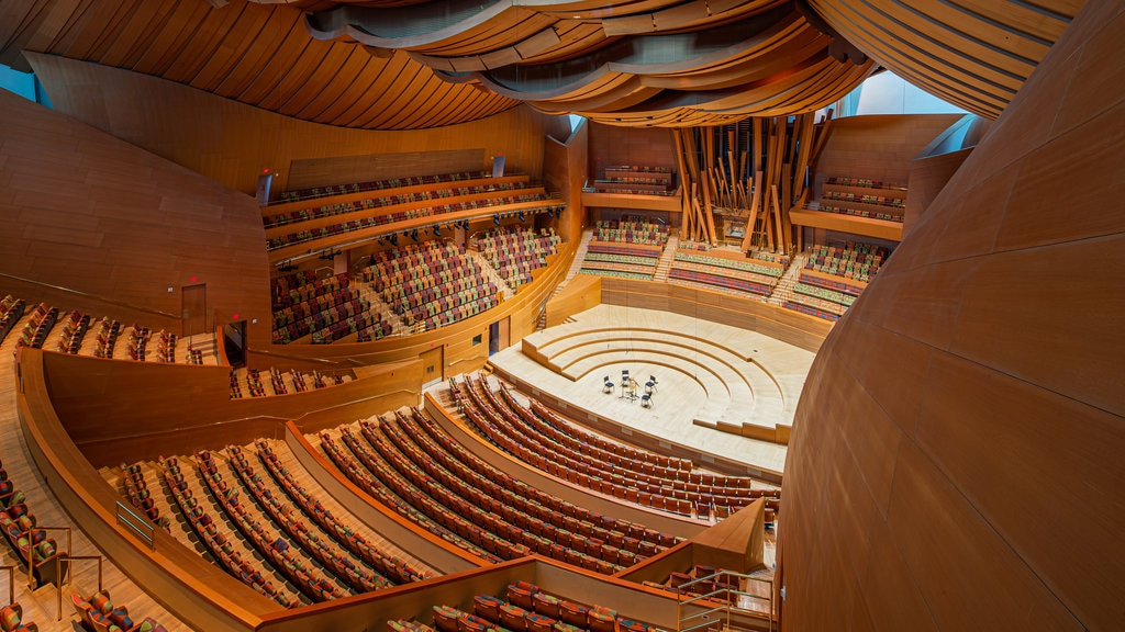 Walt Disney Concert Hall showing theater scenes and interior views