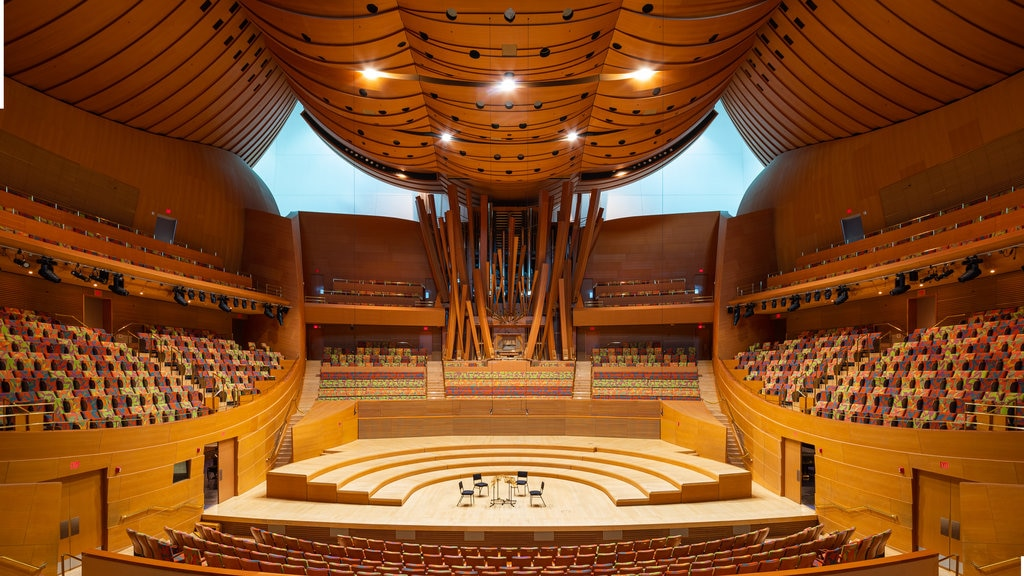 Walt Disney Concert Hall showing interior views and theater scenes