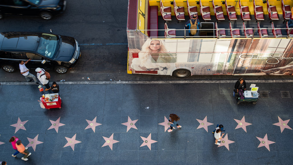 Hollywood Walk of Fame showing street scenes and a monument