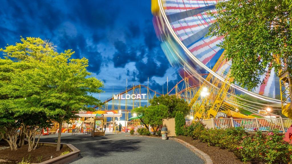 Parque de atracciones Jolly Roger mostrando paseos, escenas nocturnas y señalización