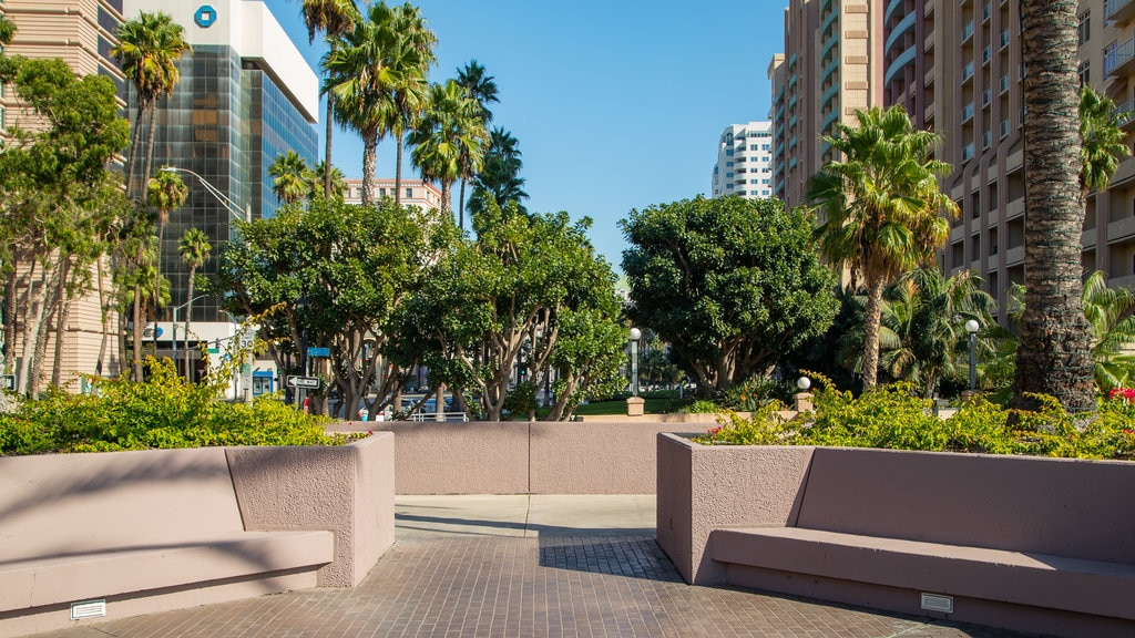 Downtown Long Beach which includes a garden and a city