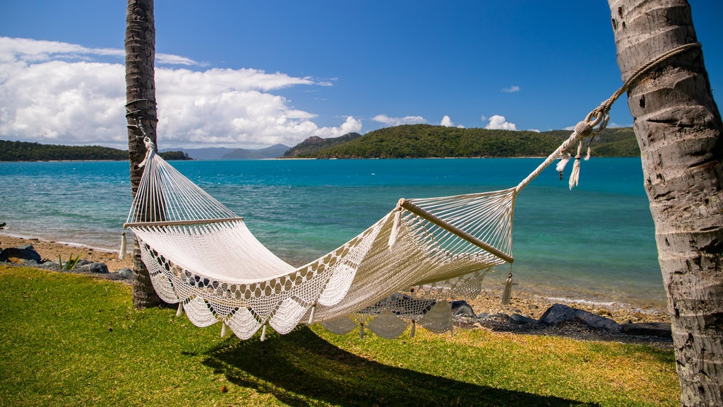 Daydream Island which includes general coastal views and tropical scenes