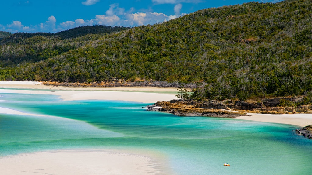 Whitsunday Islands which includes tropical scenes and general coastal views