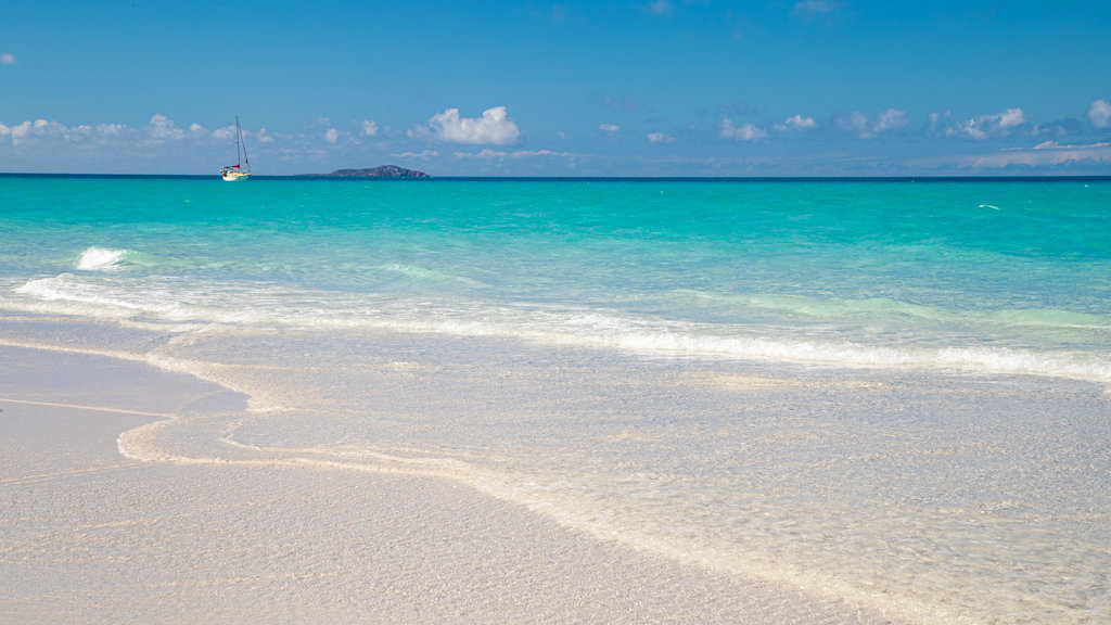 Whitsunday Islands which includes a sandy beach, tropical scenes and general coastal views