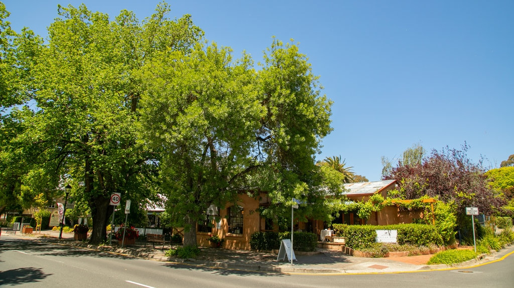 Hahndorf which includes a garden