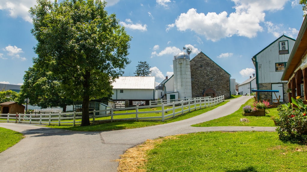 Amish Farm and House which includes a small town or village
