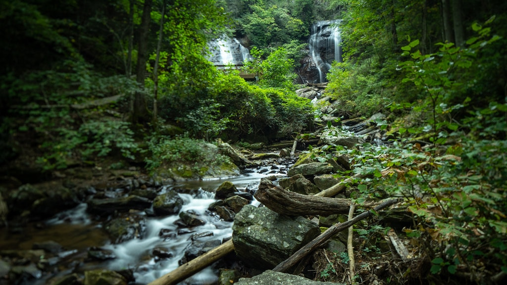 Anna Ruby Falls featuring a waterfall, a river or creek and forests