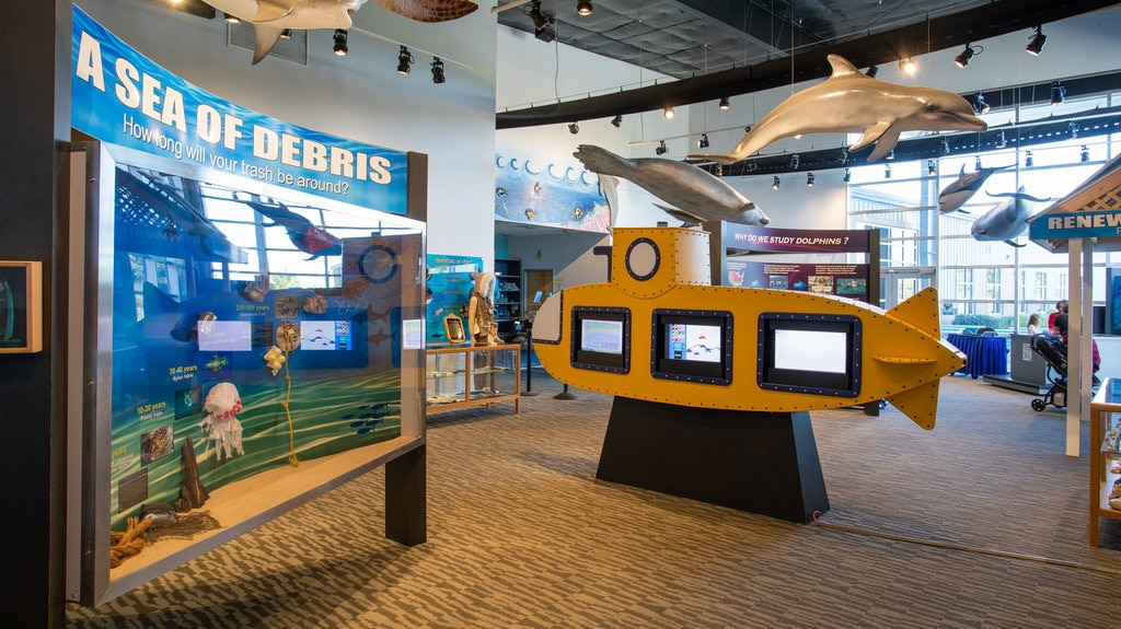 Institute for Marine Mammal Studies featuring interior views and marine life