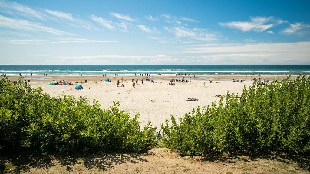 Cannon Beach which includes general coastal views and a sandy beach