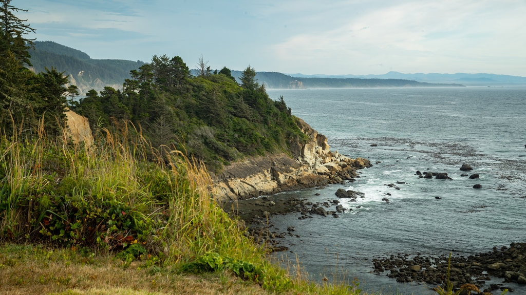 Cape Arago State Park showing general coastal views and rocky coastline