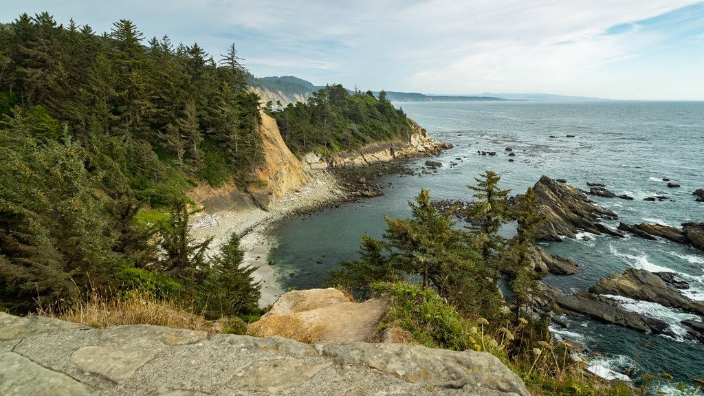Cape Arago State Park which includes general coastal views and rocky coastline