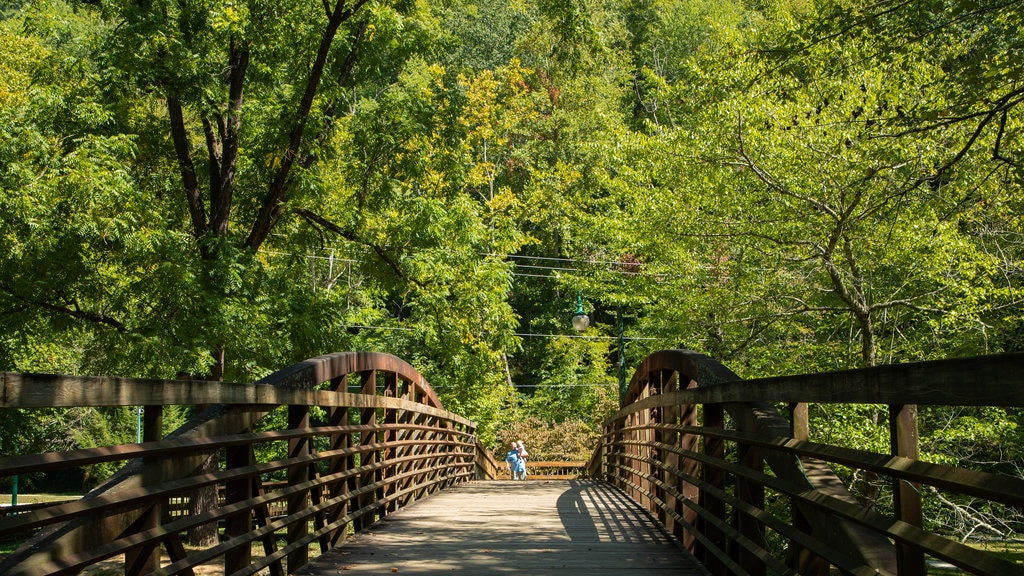 Oconaluftee Islands Park which includes a bridge
