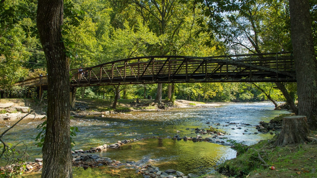 Oconaluftee Islands Park which includes forests, a bridge and a river or creek