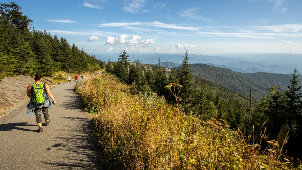Clingmans Dome featuring landscape views, tranquil scenes and hiking or walking