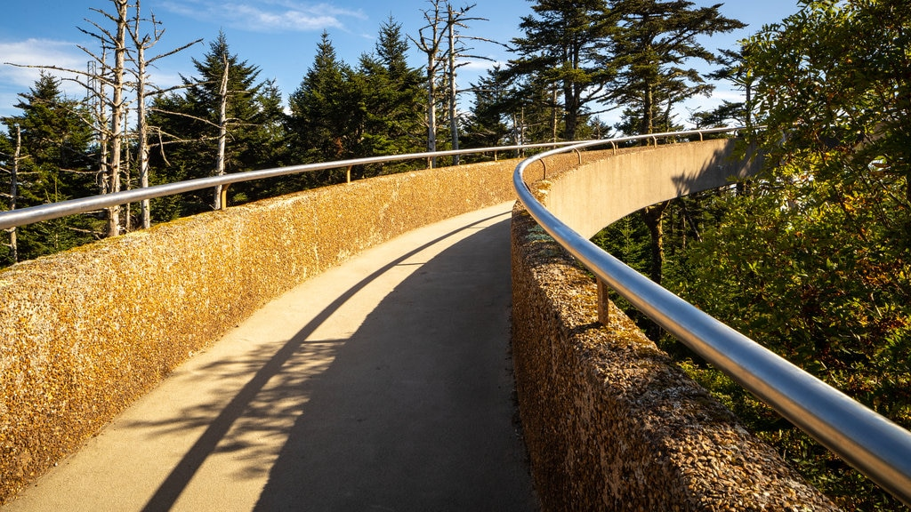 clingmans dome visitor center - 1024×576