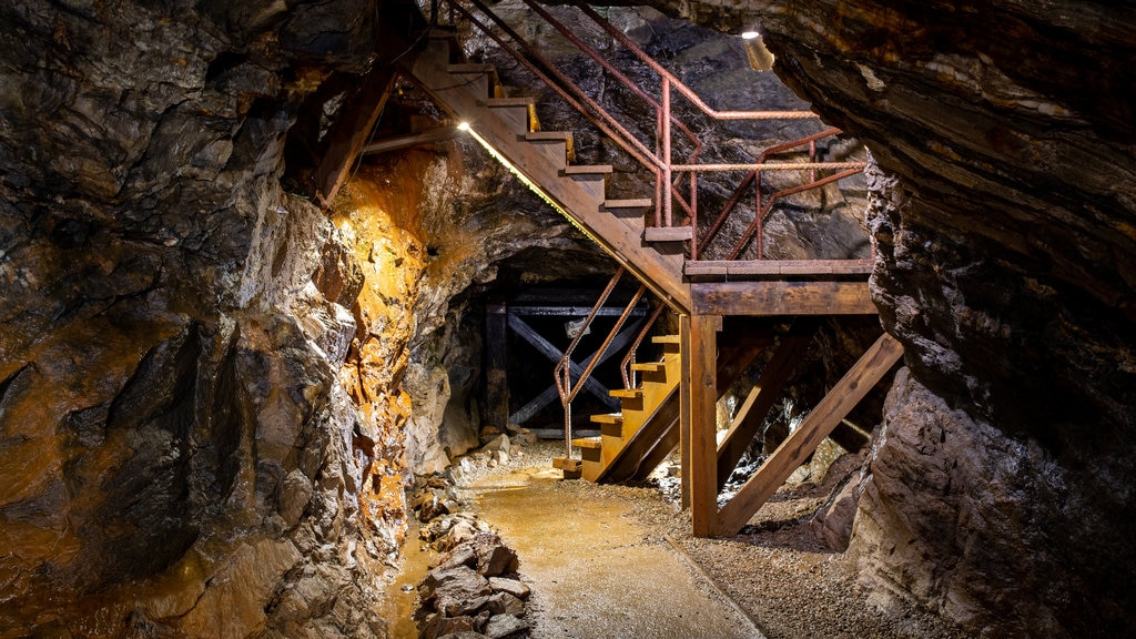 Consolidated Gold Mine which includes caving