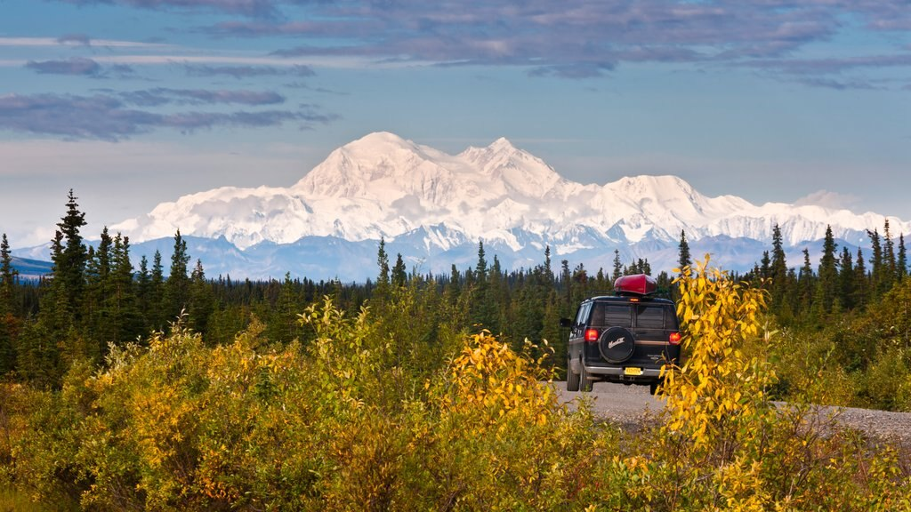 Denali showing off road driving, mountains and tranquil scenes