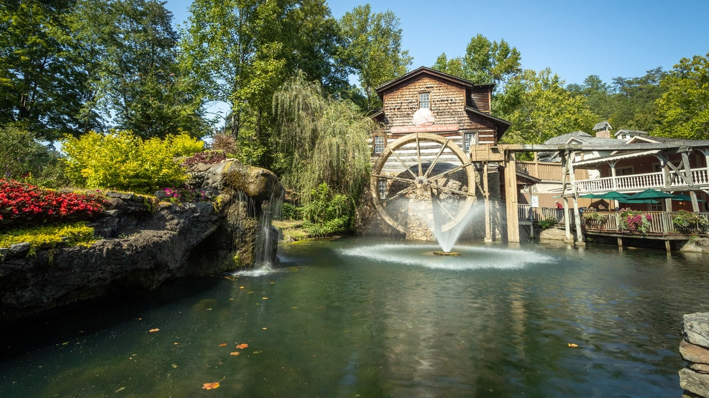 Dollywood which includes a fountain and a pond