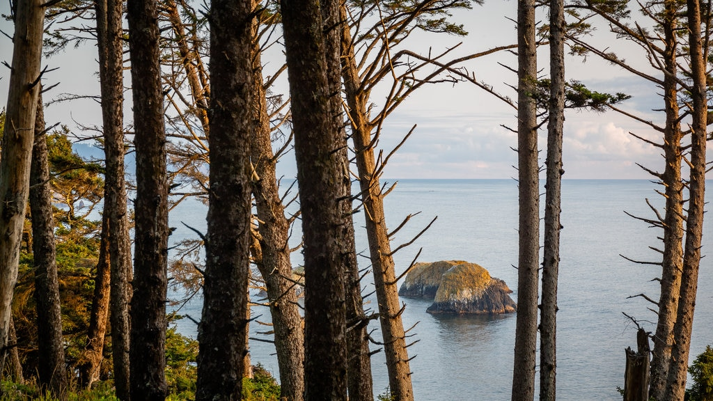 Ecola State Park featuring general coastal views