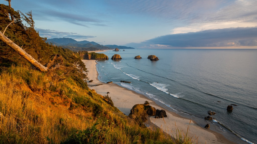 Ecola State Park which includes general coastal views, a sunset and rugged coastline