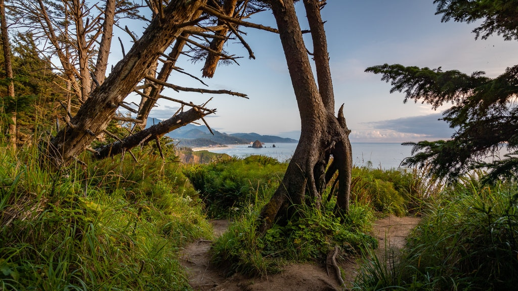 Ecola State Park featuring general coastal views and a sunset