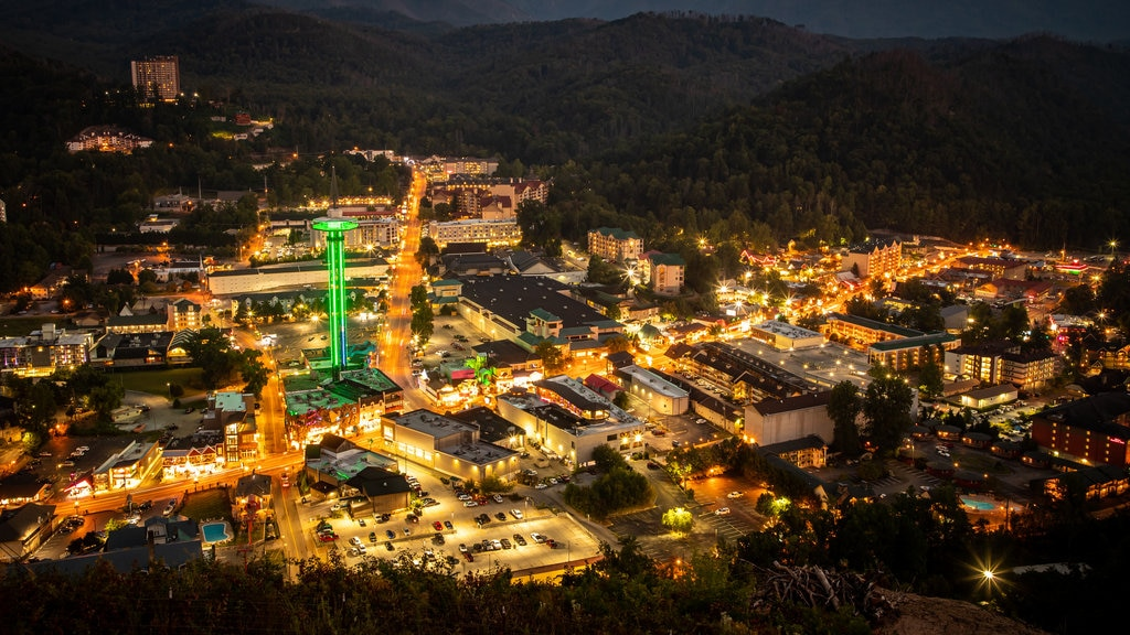 Gatlinburg which includes landscape views, night scenes and a city