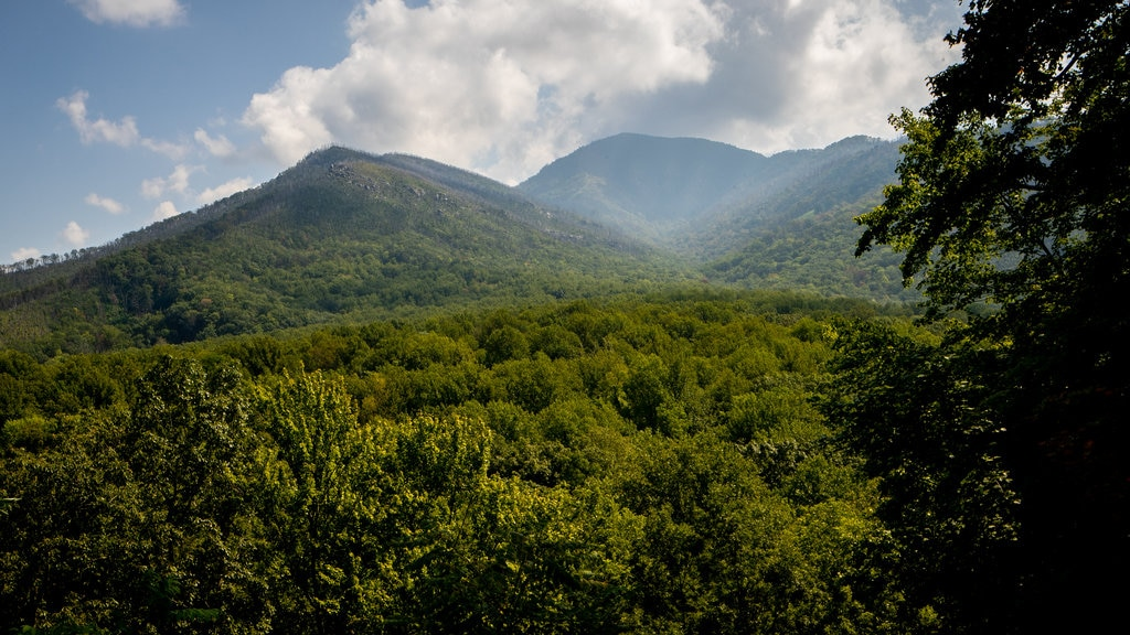 Great Smoky Mountains National Park which includes mountains, tranquil scenes and landscape views