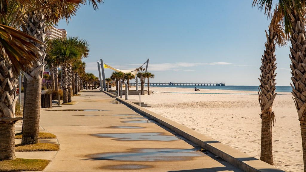 Gulf Shores Beach featuring a beach and general coastal views