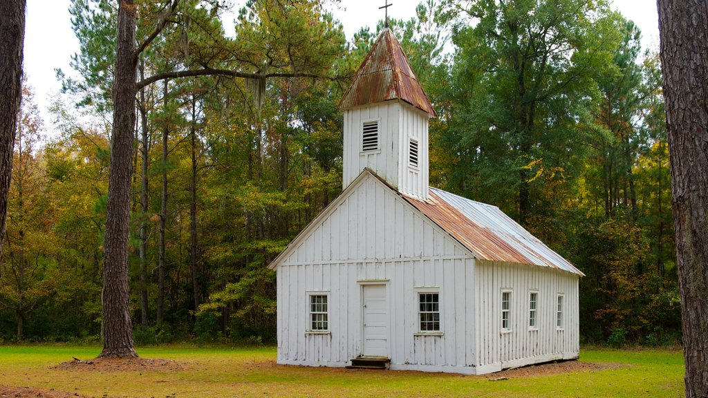 Hobcaw Barony showing a church or cathedral