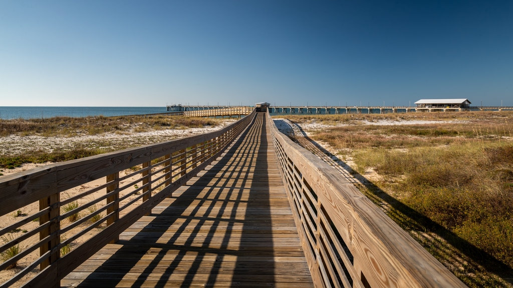 Gulf State Park Fishing Pier showing a bridge and general coastal views