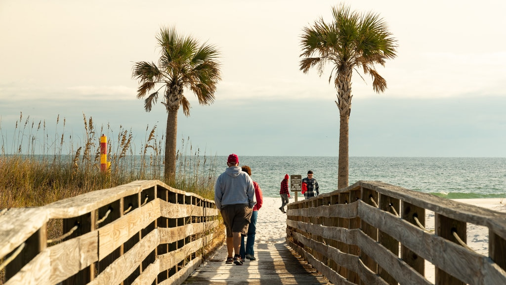 Gulf State Park which includes a bridge and general coastal views as well as a small group of people