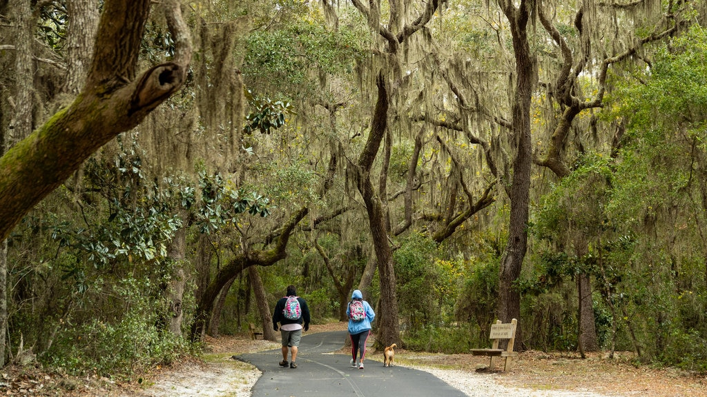 Gulf Shores which includes a park, hiking or walking and cuddly or friendly animals