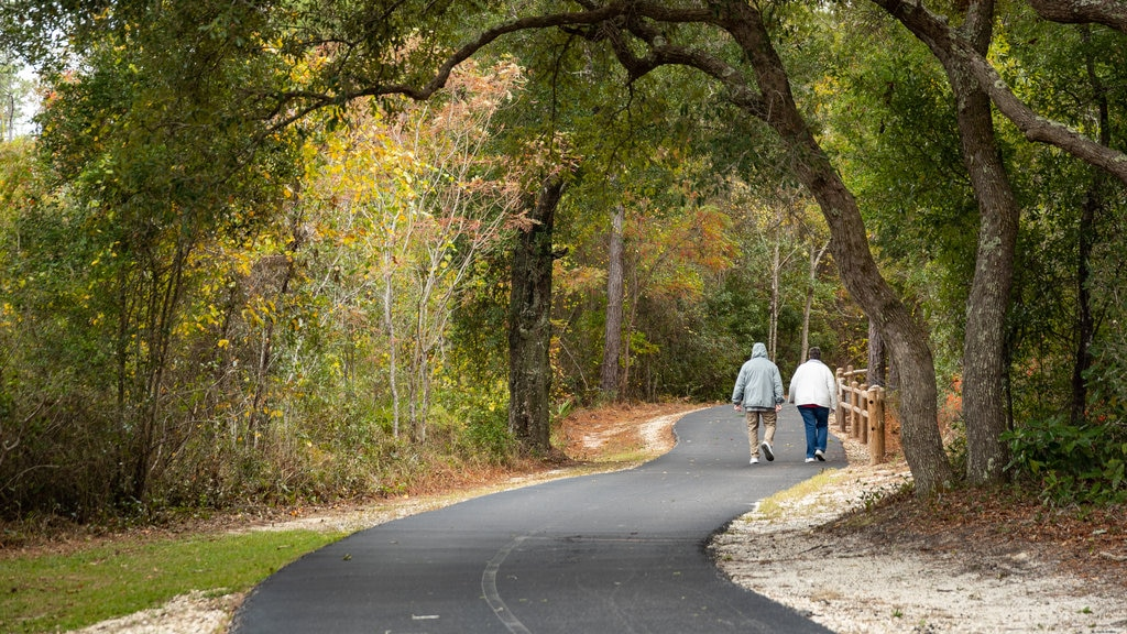 Gulf Shores which includes hiking or walking and a garden as well as a couple
