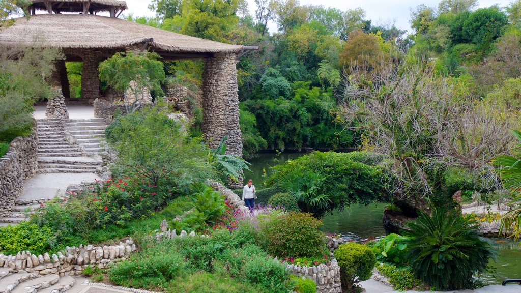 Japanese Tea Gardens which includes a pond, landscape views and a garden