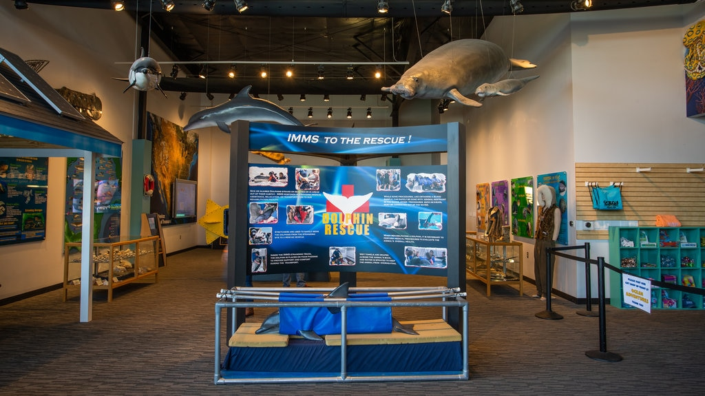 Institute for Marine Mammal Studies showing interior views and signage