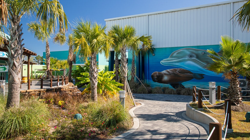 Institute for Marine Mammal Studies which includes outdoor art