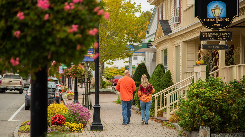 Kennebunk showing street scenes as well as a couple
